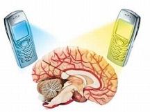 radiasi-ponsel-terhadap-otak